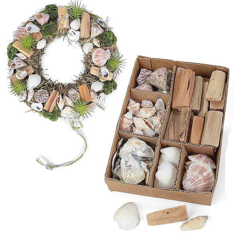 Muschel treibholz sortiment ca 500 g natur g nstig online - Muschel dekoration ...